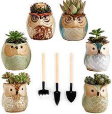 Wirezoll 6 macetas suculentas de cerámica, 6 macetas de bonsái de búho con 3 herramientas de mano de jardinería para decoración del hogar y la oficina, 3