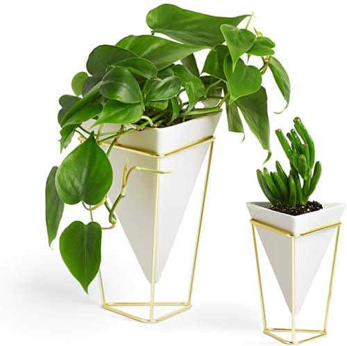 Umbra 1004372-524 Trigg Desktop Planter Vase and Geometric Container, White Ceramic/Brass, Set of 2