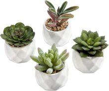 Mini plantas suculentas artificiales MyGift en macetas de macetas de cerámica geométrica, juego de 4