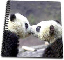 3dRose db_2547_1 beb pandas Dibujo Libro, 8 por 8 pulgadas